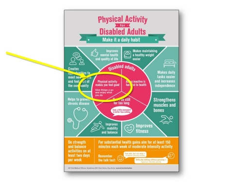 Disability UK guidelines